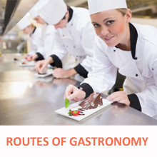 Gastronomic routes